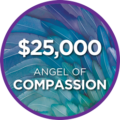 Angels of Hope Special - 2021 4